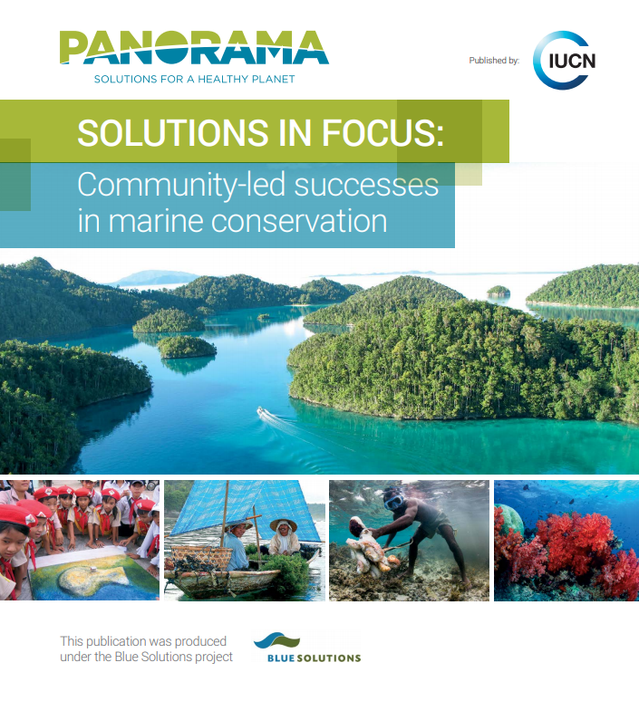 Solutions in Focus: Community-led Successes in Marine Conservation